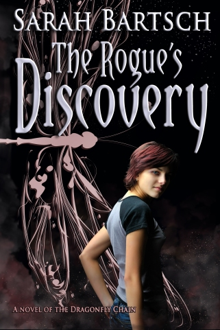 Rogue's Discovery ebook
